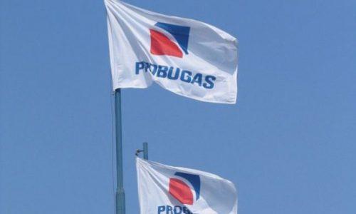 Flag Probugas